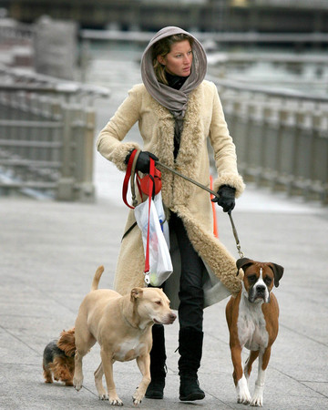 01-27 Gisele walks her dogs along the Hudson River boardwalk in NYC January 27 2007